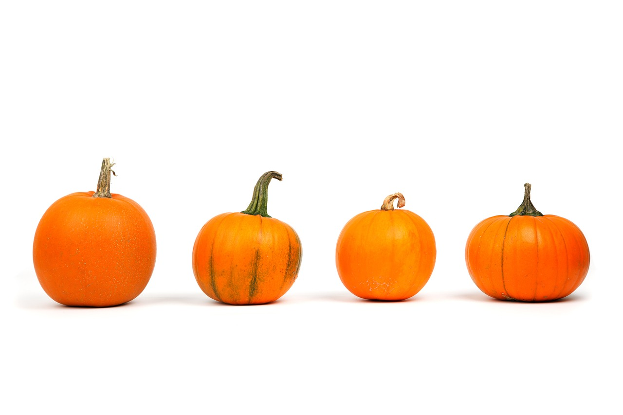 Pumpkin Power! Don't just carve 'em … cook em!